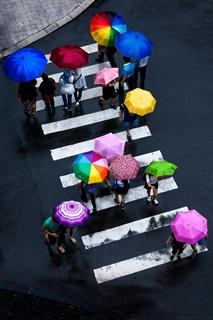 Sắc màu trong mưa