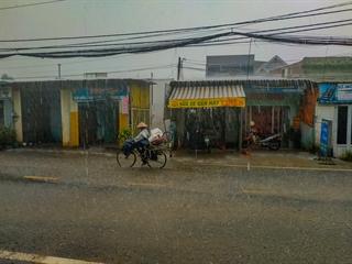 Dưới mưa