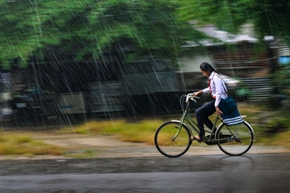 cơn mưa chiều